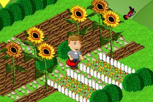 《鲜花种植》截图1
