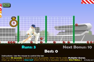 《棒球训练》游戏画面1