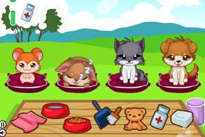 《照顾漂亮宠物》游戏画面1