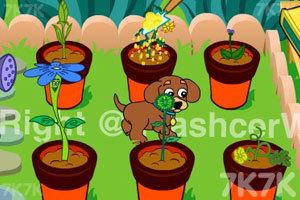 《小狗种美丽鲜花》截图8