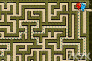 《森林冰火人双人迷宫》截图6