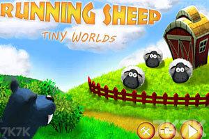 《小绵羊快跑》截图3