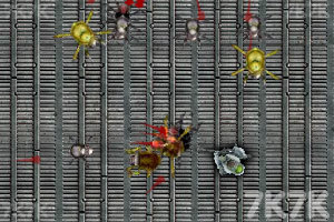 《灭虫行动》游戏画面3