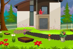 《逃出美丽花园》游戏画面1