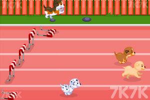 《狗狗障碍赛跑》游戏画面3