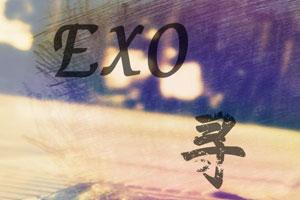 追尋EXO