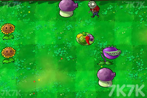 《植物大戰僵尸羊年版》游戲畫面5