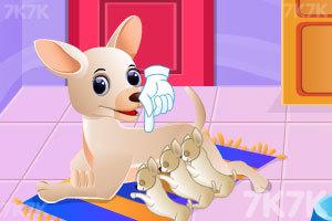 《宝贝照顾小狗》游戏画面4