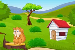 《逃出宝藏花园》游戏画面1