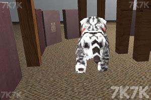 《猫咪停靠》游戏画面1
