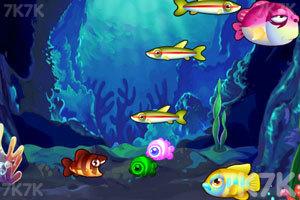 《一起吃鱼》游戏画面3