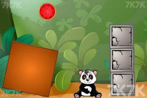 《熊猫吃西瓜》截图4