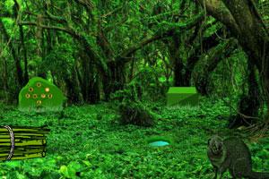 《热带雨林逃脱》游戏画面1
