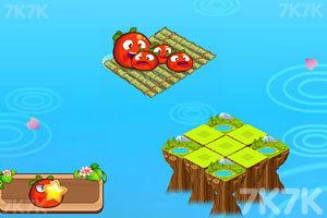 受困的西红柿