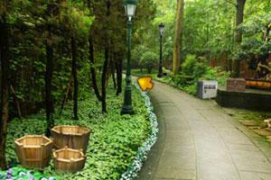 《逃离森林花园》游戏画面1