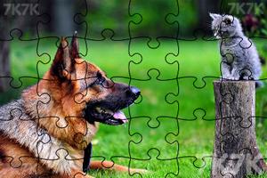 《拼出可爱小狗》游戏画面3