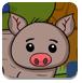 漂亮的猪救援