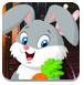 救援可爱兔子