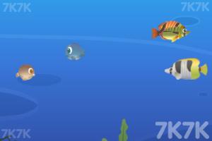 《梦幻大鱼吃小鱼》游戏画面3