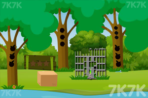《救援绿色鹦鹉》游戏画面2