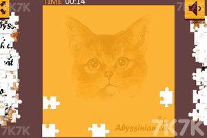 《个性猫拼图》游戏画面3