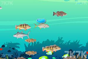 《大鱼吃小鱼2020》游戏画面1