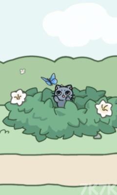 《每天躲猫猫2》游戏画面6