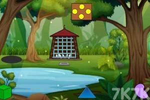 《救济白鸽》游戏画面4