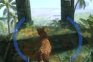 丛林中的豹子
