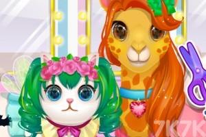 《我的宠物店》游戏画面1