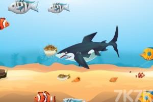 《鲨鱼进化》游戏画面4